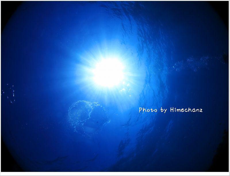 太陽サンサン!