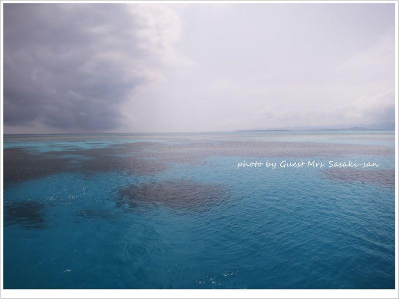 最高の青い海!