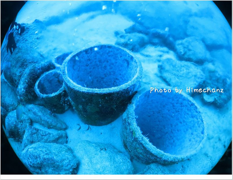 地球から湧き出てくる温泉! photo by CANON PowerShot S100