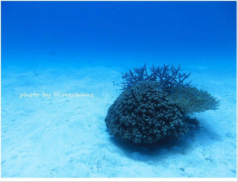 透明度いい感じの浜島東 photo by CANON PowerShot S100
