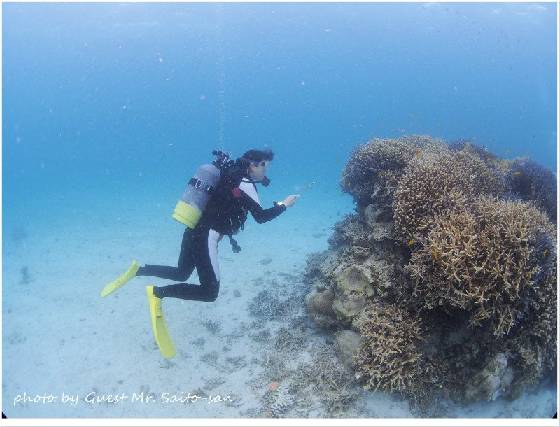 指示棒ならぬ指揮棒を振ってお魚とコミュニケーション♪ photo by OLYMPUS OM-D E-M5