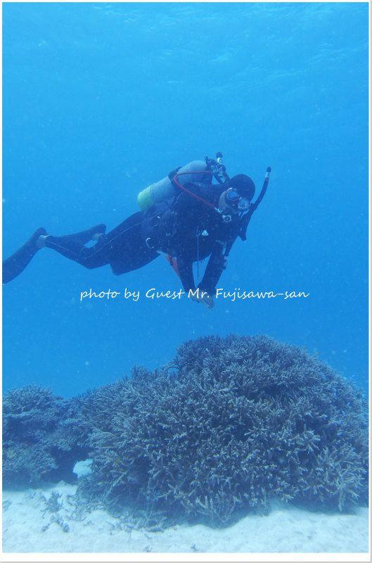 サンゴとヒメ♪ photo by Olympus XZ-2