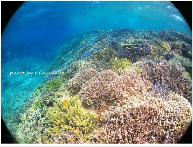 小浜島のこのポイントいいですよ!!! photo by CANON PowerShot S100