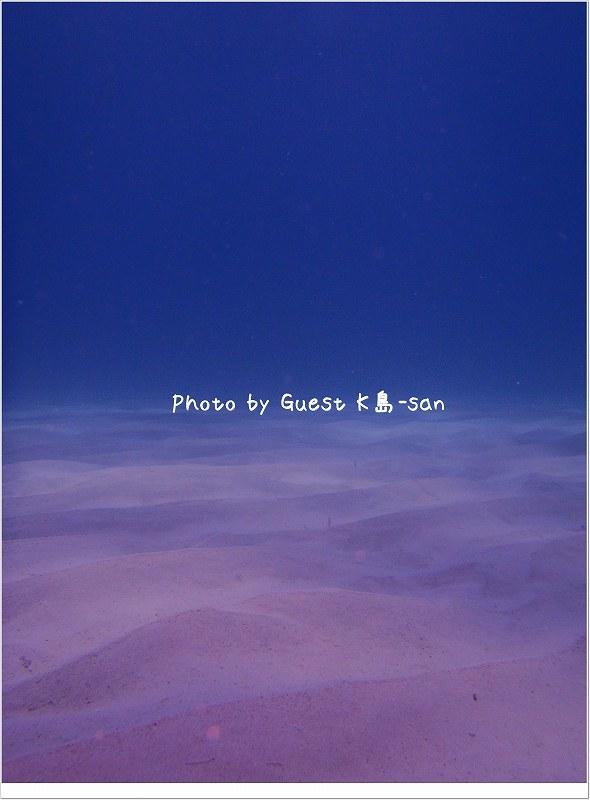 砂紋がきれいでした! Photo by OLYMPUS TG-610