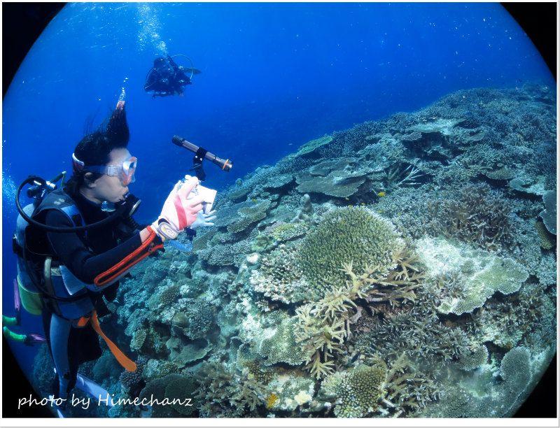 極上サンゴをたっぷり堪能♪ photo by CANON PowerShot S100