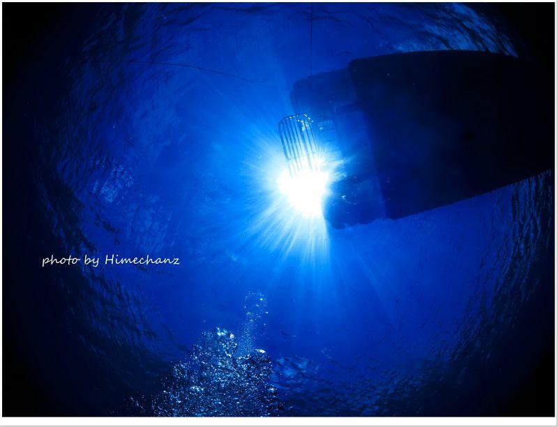 今日も太陽の光が眩しい!!! photo by CANON PowerShot S100