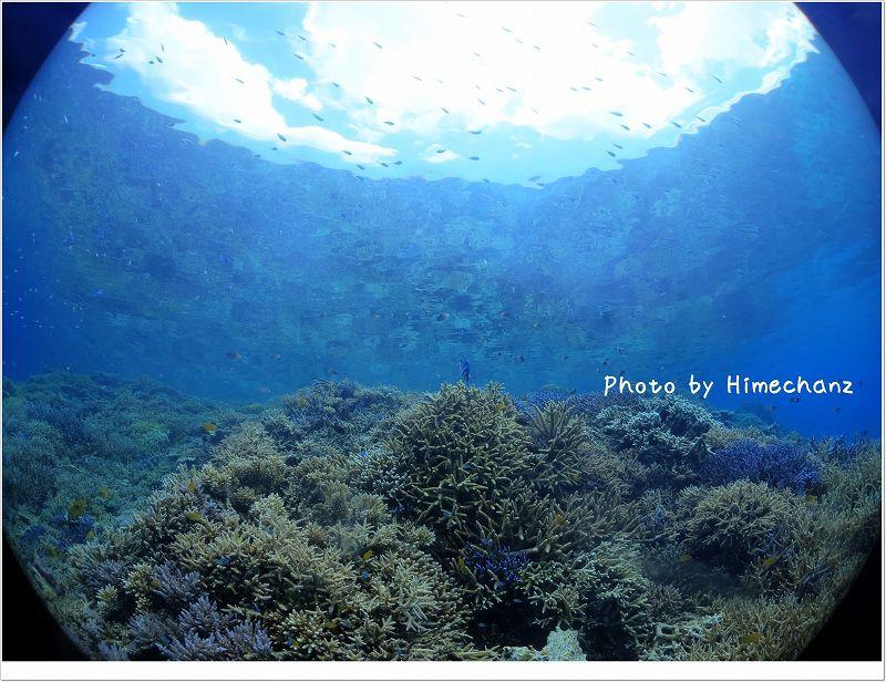 水面鏡にサンゴと空が広がっています! photo by CANON PowerShot S100