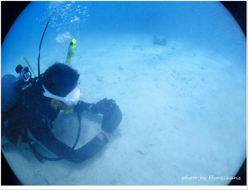 慣れてきた2本めは水中フォト体験! photo by CANON PowerShot S100