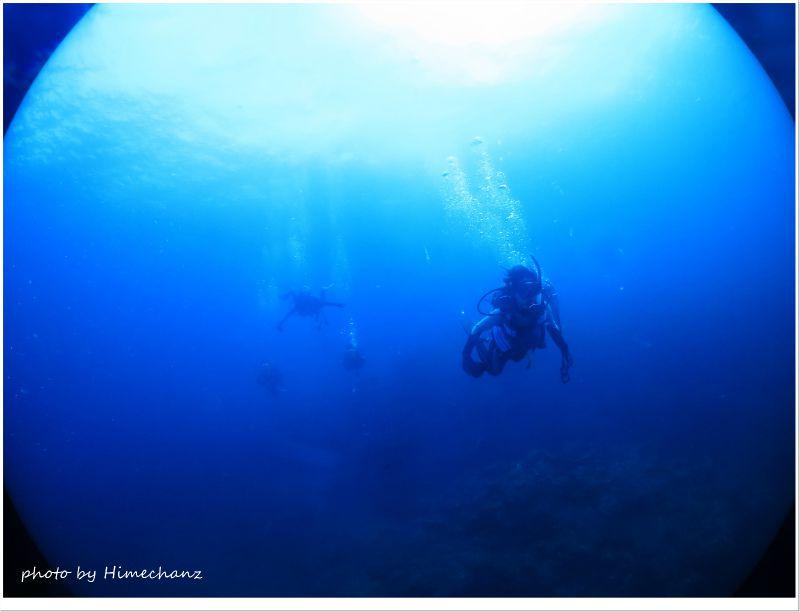のんびり遊泳しながらカメちゃん探すで~♪ photo by CANON PowerShot S100