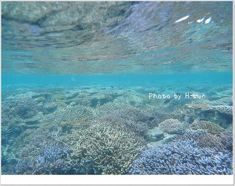 美しい石西礁湖 photo by Sea&Sea 1G