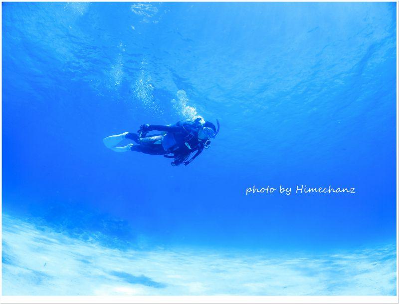空を飛んでいるように見えませんか♪ photo by CANON PowerShot S100