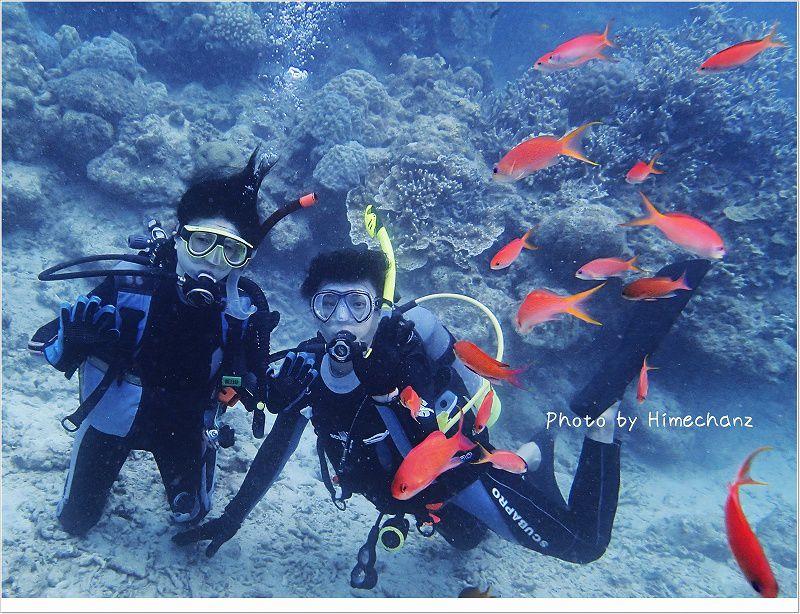 美しい魚たちに囲まれました! photo by OLYMPUS STYLUS TG-2 Tough