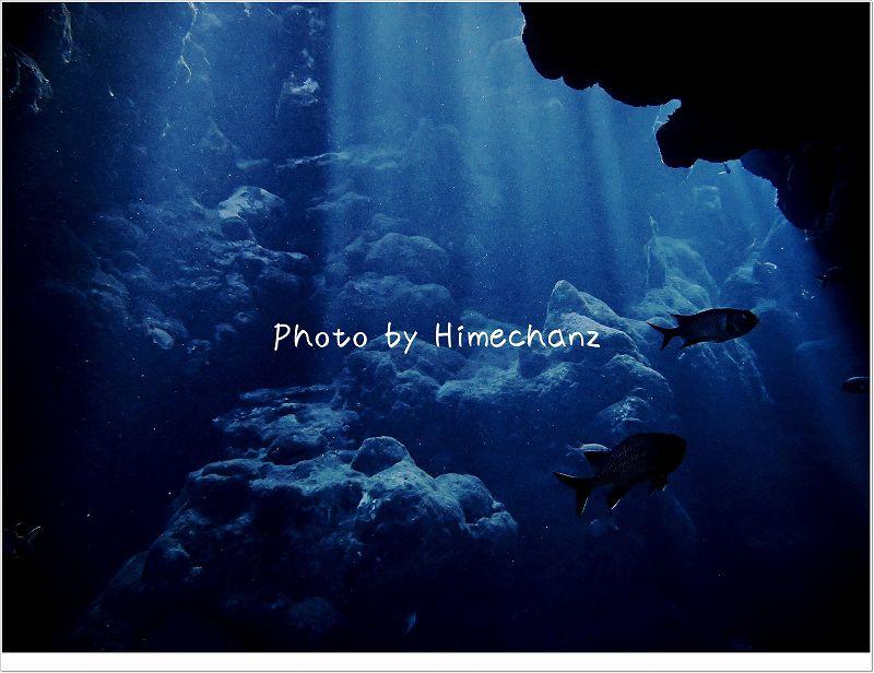 3回目のチャレンジでやっと洞窟の光が見れました! photo by OLYMPUS STYLUS TG-2 Tough