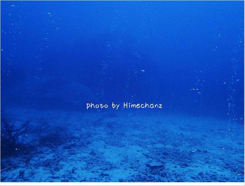 地球の息吹 photo by OLYMPUS STYLUS TG-2 Tough