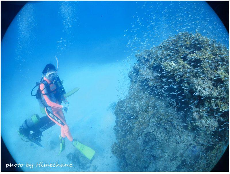 浜島東の極上サンゴと魚たちに癒やされました♪ photo by CANON PowerShot S100