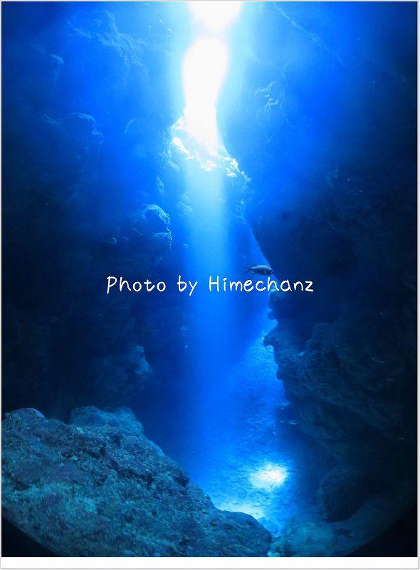 美しくそそぐ太陽の光 photo by CANON PowerShot S100