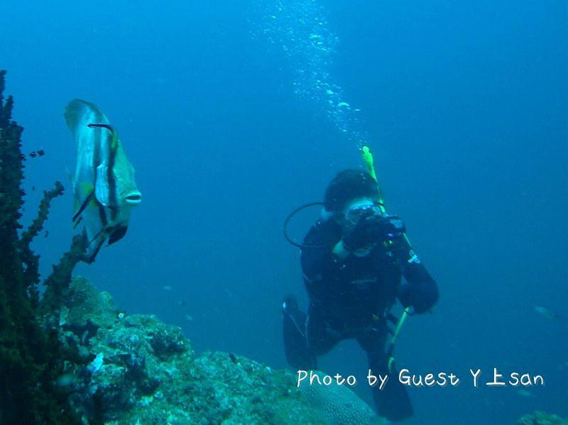 おもしろ顔な正面 photo by Sea&Sea 1G