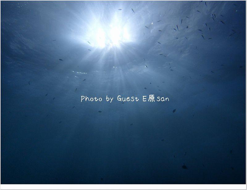 太陽サンサン♪ photo by OLYMPUS STYLUS TG-2 Tough