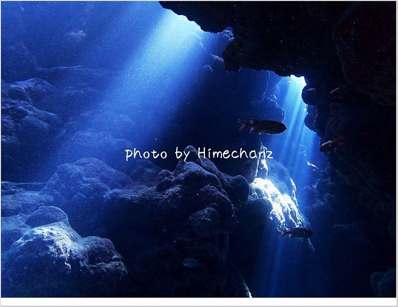 光のカーテンが美しすぎました! photo by OLYMPUS STYLUS TG-2 Tough