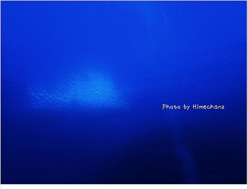 水深24メートルからベアーズ号が見えちゃいました! photo by OLYMPUS STYLUS TG-2 Tough