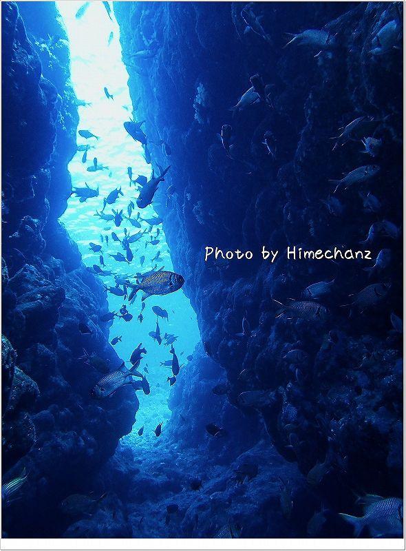 浅場へ続く場所は魚のアーチが広がります photo by OLYMPUS STYLUS TG-2 Tough