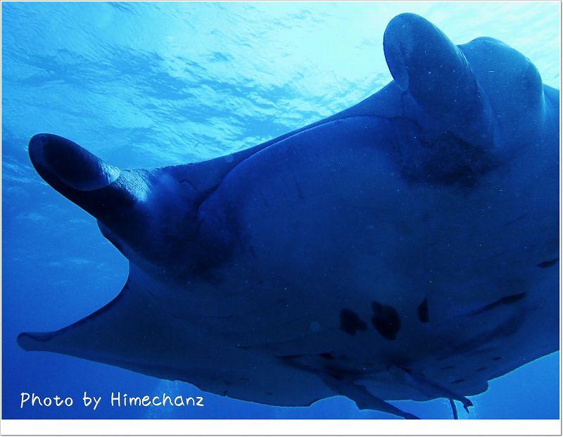 ハンパない距離やったよ!サンゴちゃん。 photo by OLYMPUS STYLUS TG-2 Tough