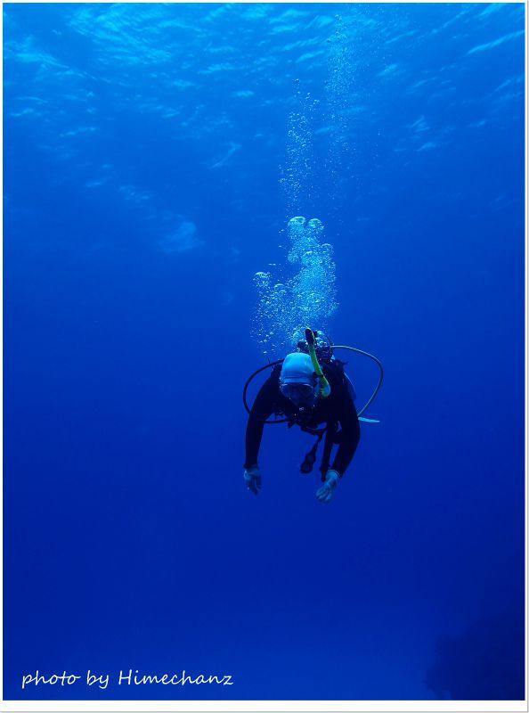5年ぶりのダイビングとは思えない落ち着きでした♪ photo by OLYMPUS STYLUS TG-2 Tough