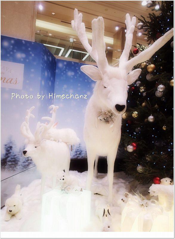 京都もクリスマス一色でした!