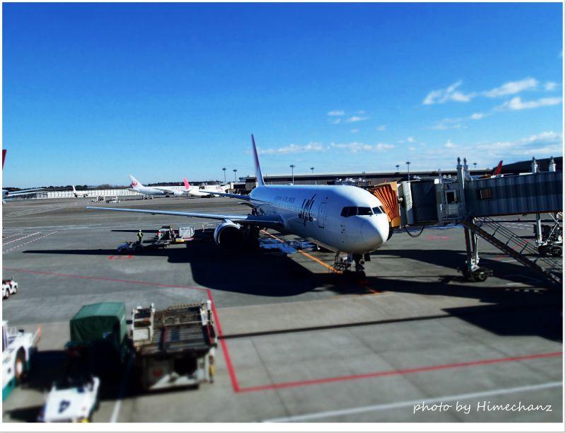 JALチャーター便にて楽チンの4.5時間のフライトです♪ photo by OLYMPUS STYLUS TG-2 Tough