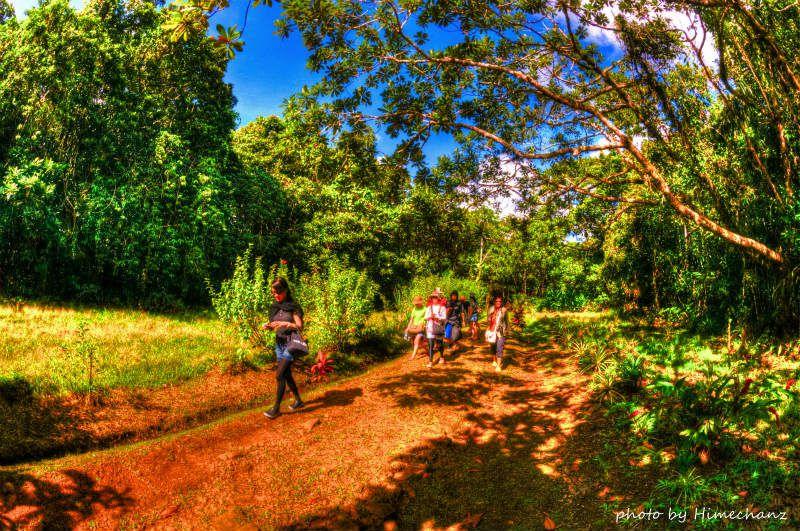 まずはジャングルの中を散策です♪ photo by Nikon D300