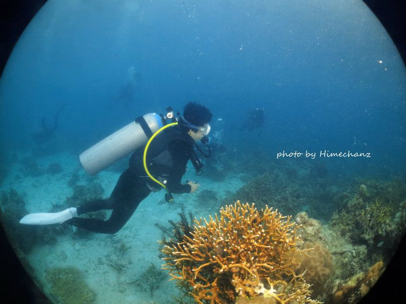 れいこさん、リクエストされてたマンジュウイシモチ幼魚発見でウキウキ中w photo by CANON PowerShot S100