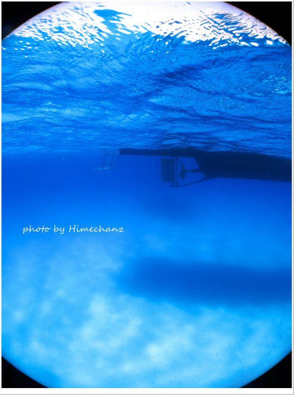 黒島ブルー♪ 抜群の透明度を誇る黒島にある砂地ポイント。ここを潜るともうただぼぉ~っとしたくなりますw photo by CANON PowerShot S100